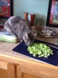 Ahhhhhhhhhhhhhhhh.......celery!